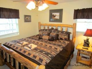 Beech Bear Retreat - Blue Ridge Mountains vacation rentals