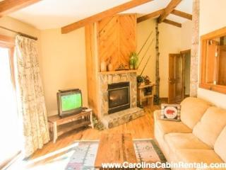 2 bedroom House with DVD Player in Boone - Boone vacation rentals
