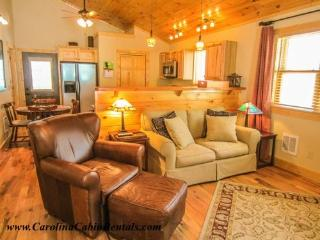 Bear Tracks Cabin - Beech Mountain vacation rentals