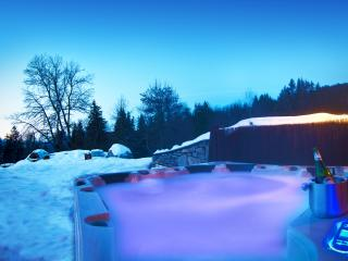 Chalet Magic Rock - Meribel vacation rentals