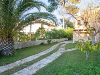 Albufera - Playa de Muro vacation rentals