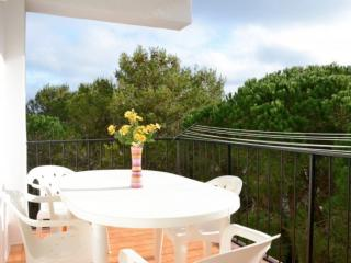 Bright 2 bedroom Begur Apartment with Washing Machine - Begur vacation rentals