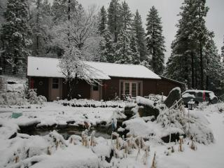 Faraway Views & Tranquility in Family Cabin & Cottage on 9 Acres Near Lake - Bass Lake vacation rentals