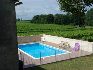7 bedroom Villa in St Quentin De Caplong, Aquitaine, France : ref 1718798 - Saint-Quentin-De-Caplong vacation rentals