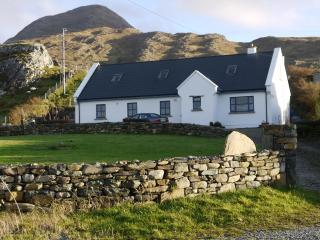 Beautiful House with Internet Access and Satellite Or Cable TV - Tullycross vacation rentals