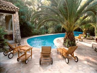Villa in La Roquette Sur Siagne, Cote D Azur, France - La Roquette-sur-Siagne vacation rentals