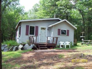 Nice Cabin with A/C and Television - Willard vacation rentals