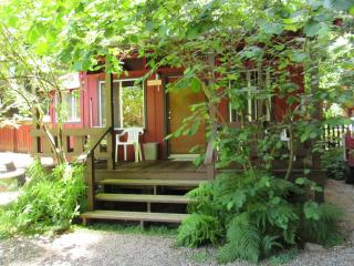 The Hazelnut Studio Cabin with kitchenette in the Redwoods - Felton vacation rentals