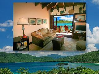 Peter Bay Gatehouse Penthouse Suite - Saint John vacation rentals