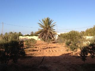 Menzel tranquille - Djerba vacation rentals