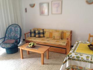 Edificio Playa - Los Cristianos vacation rentals