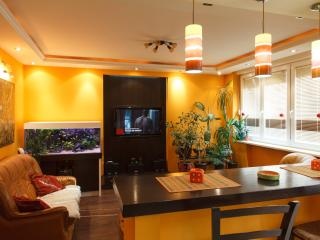 New Luxury Apartment In Center Of Belgrade! Promo! - Serbia vacation rentals