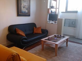 'Best of Both Worlds' - Spacious ground-floor apar - Amsterdam vacation rentals