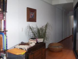 Big apart 96m2 with 2 patio Palermo - Buenos Aires vacation rentals