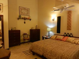 #1 Luxury Penthouse Apartment - Portmore vacation rentals