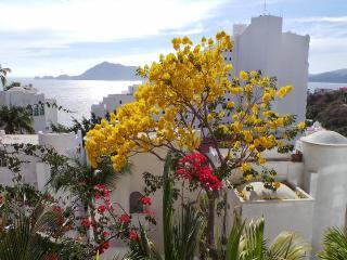 Beautiful Home in the Las Hadas Peninsula - Manzanillo vacation rentals