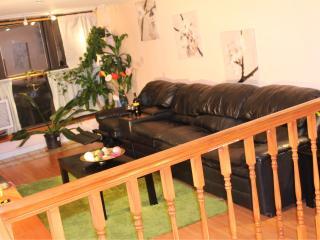 NYC.XXL-Duplex Condo slp12 Fancy Carroll Gardens - Brooklyn vacation rentals