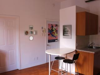 1 bedroom Apartment with Internet Access in Montreal - Montreal vacation rentals
