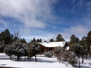 Relaxing Bison Ridge Log Cabin, Backs to Forest - Show Low vacation rentals