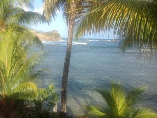 Rainbow Beach Apartments And Rooms - Dominica vacation rentals