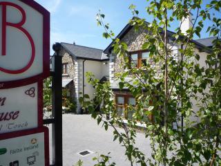 Avlon House AA4* award winning B&B - Athy vacation rentals