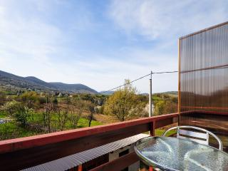Apartment and Rooms Ankica - 80321-S2 - Smoljanac vacation rentals