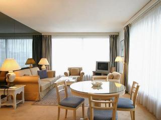 Champs Elysees 1 Bedroom Penthouse with Terrace (2488) - Paris vacation rentals
