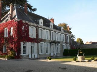 Nice Chateau with Central Heating and Satellite Or Cable TV - Ludes vacation rentals