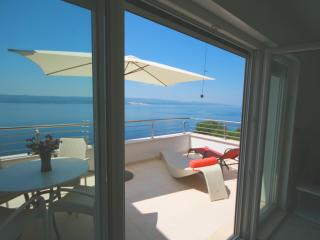 Villa Divina New Luxury Villa with outdoor Pool - Brela vacation rentals