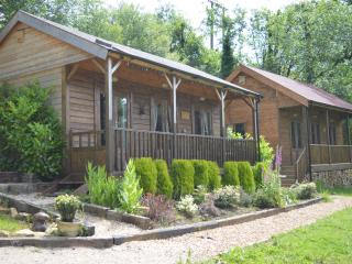 Beautiful Cabin with Deck and Outdoor Dining Area - Ironbridge vacation rentals