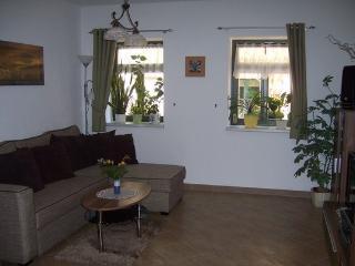 Ferien in Pirna zw. Dresden und Sächsische Schweiz - Pirna vacation rentals