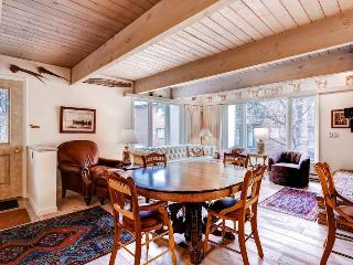 Comfortable 3 bedroom Condo in Aspen - Aspen vacation rentals