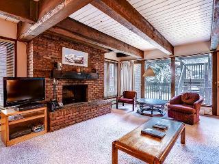 Cottonwoods Condo 2F - Aspen vacation rentals