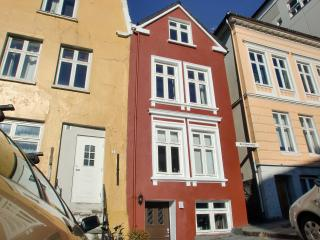 2 bedroom Apartment with Internet Access in Bergen - Bergen vacation rentals