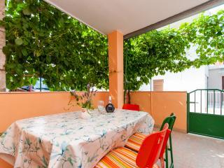Apartment Anka - 45921-A1 - Arbanija vacation rentals