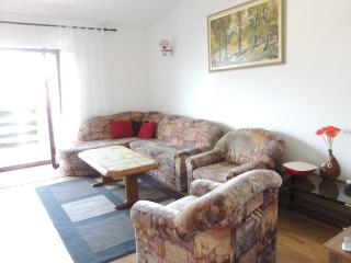 Cozy 2 bedroom Condo in Island of Pag - Island of Pag vacation rentals