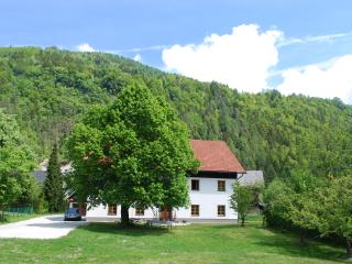 Country House Trata - Apt 4 Studio Mountain view - Kranjska Gora vacation rentals