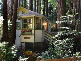 Romantic 1 bedroom House in Cazadero with Television - Cazadero vacation rentals