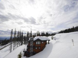 Longhorn Lodge Feathertop Location Sleeps 15 - Big White vacation rentals