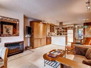 Cozy Condo with Deck and Internet Access - Aspen vacation rentals