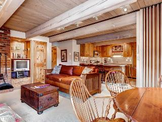 Nice Condo with Internet Access and Mountain Views - Aspen vacation rentals