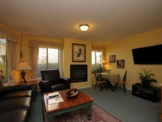 1 bedroom apartment downtown victoria near ocean - Victoria vacation rentals