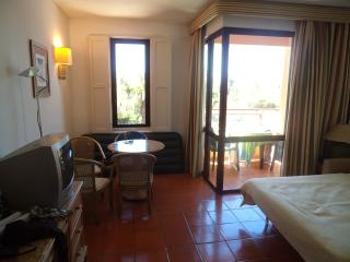 Nice Bed and Breakfast with Internet Access and A/C - Loule vacation rentals