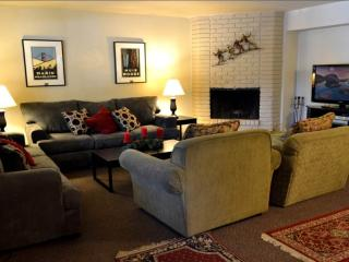 Perfect 3 bedroom House in South Lake Tahoe - South Lake Tahoe vacation rentals