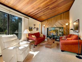 Winter - Mid-Week Rates Reduced 50% - Non-Holiday - Tahoma vacation rentals