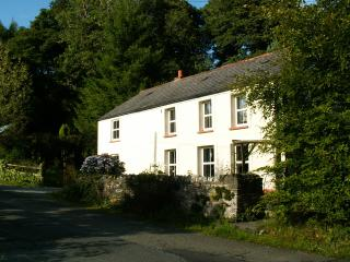 Charming 2 bedroom Brechfa Cottage with Internet Access - Brechfa vacation rentals