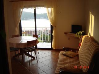 Apartment A-1 Josip Pe?arevi? - Vis vacation rentals