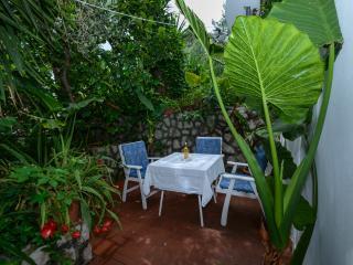 Apartment Oreb 3,Kolocep - Dubrovnik-Neretva County vacation rentals