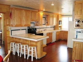 Pinecone Cabin - Durango vacation rentals