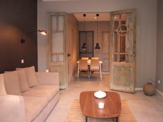 Appartement 1 chambre avec terrasse - La Madeleine vacation rentals